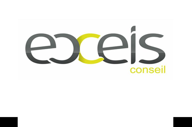 Logo_Exeis