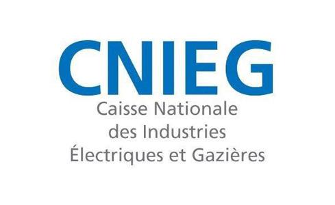 Logo_CNIEG